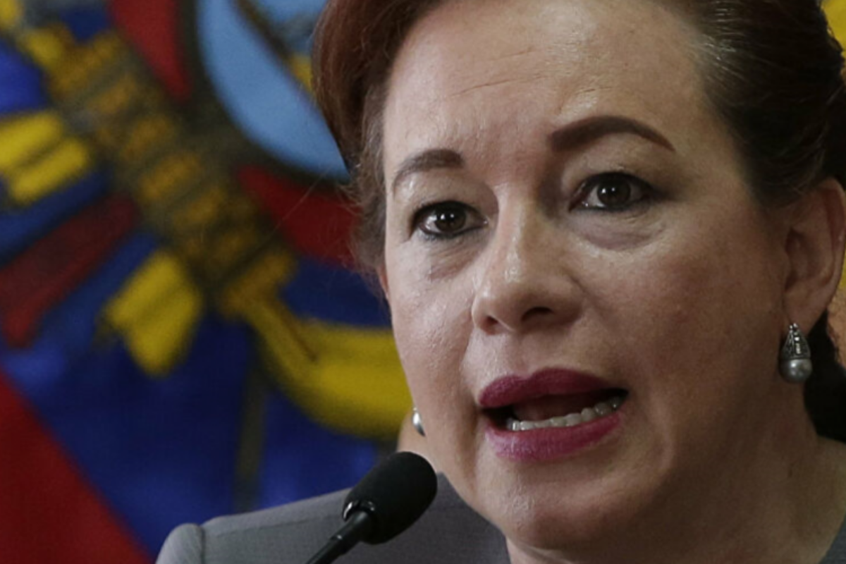 "Espinosa: Almagro is ""desperate"" to hold elections at the OAS no matter what"